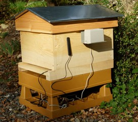 ruche connecté bee-online